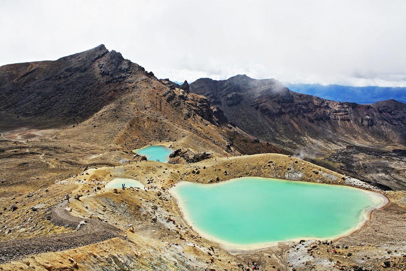 NHKラジオ第1マイあさ!5月はニュージーランドの世界遺産「トンガリロ国立公園」をご紹介