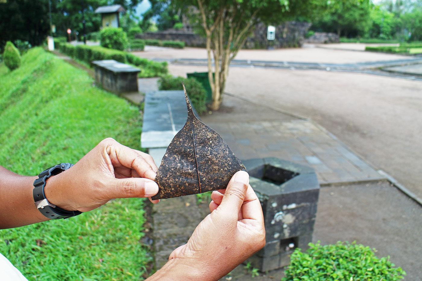 インドネシアの世界遺産「ボロブドゥールの仏教寺院群」