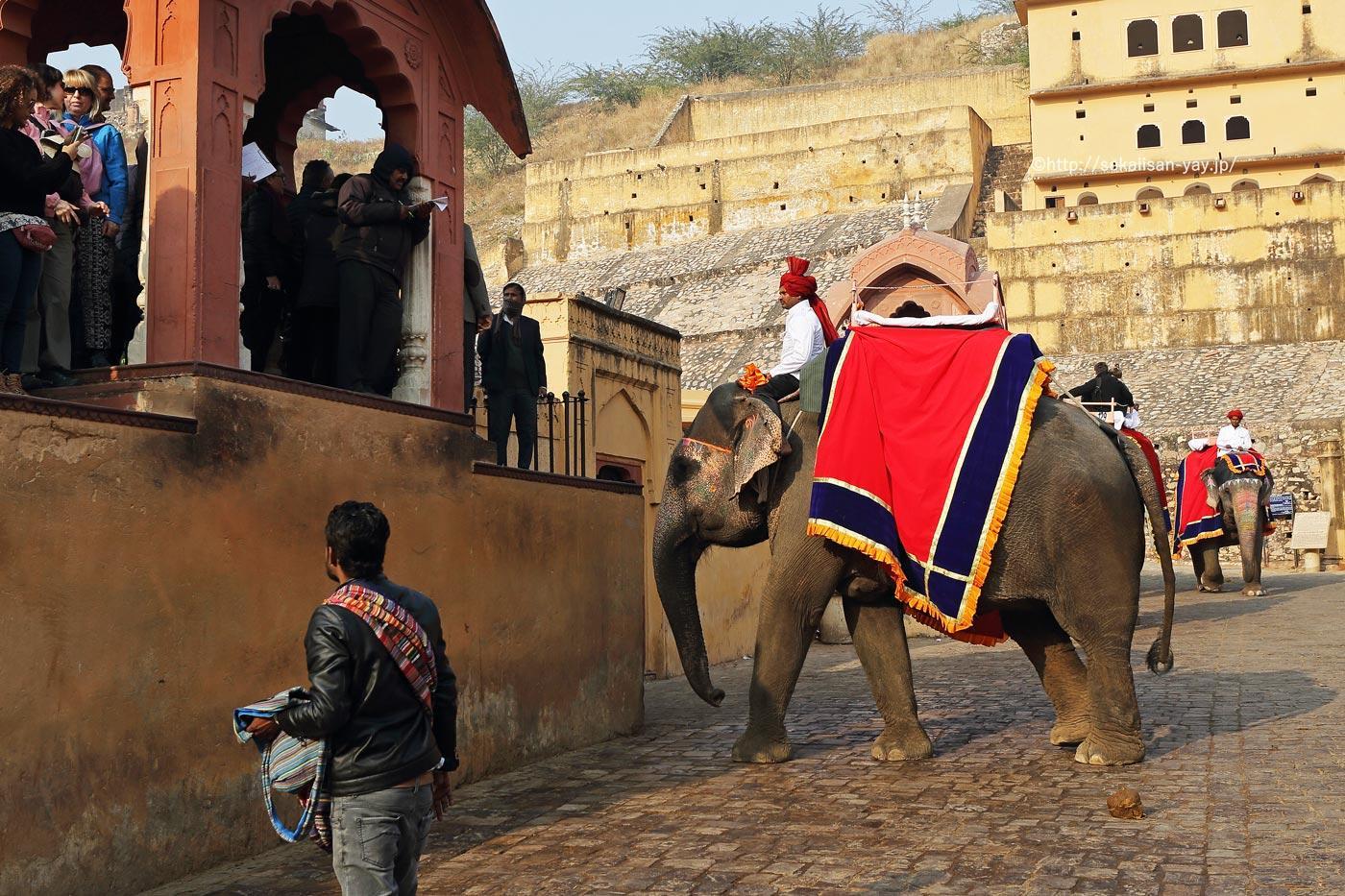 ラージャスターンの丘陵要塞群(ジャイプールのアンベール城)- 象タクシー